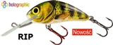 Woblery SALMO Hornet 4 SDR